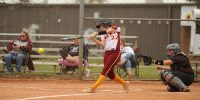 softball stock image