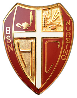 Hesston College BSN nursing pin