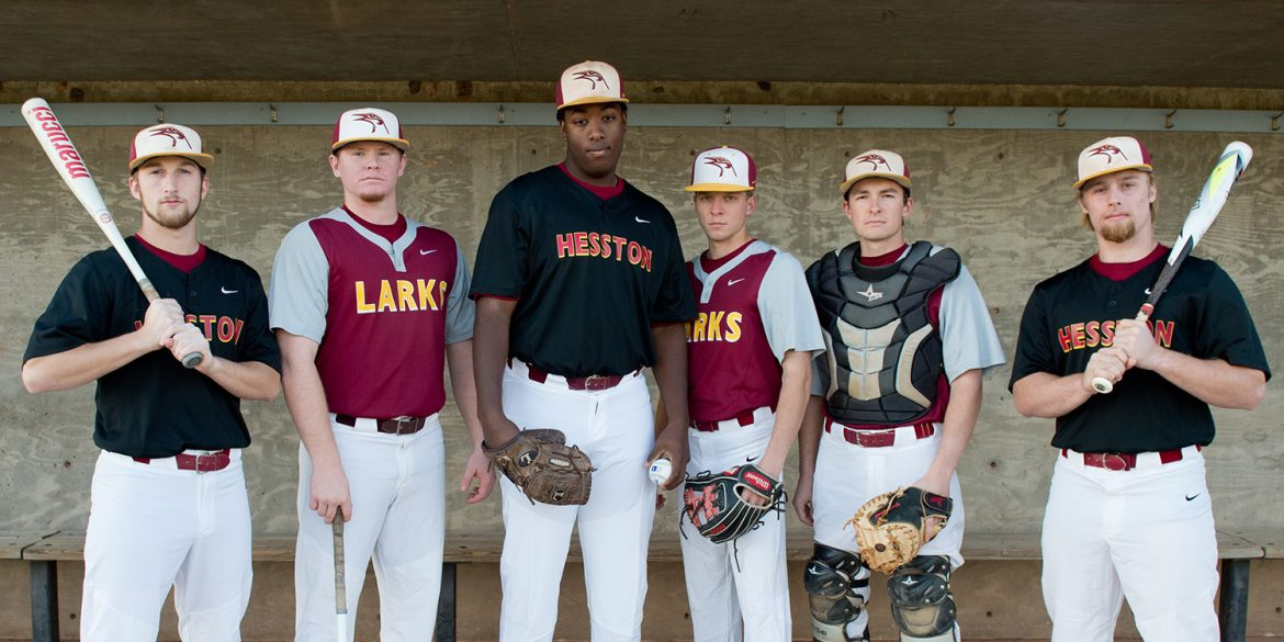 2018 Larks baseball team leaders