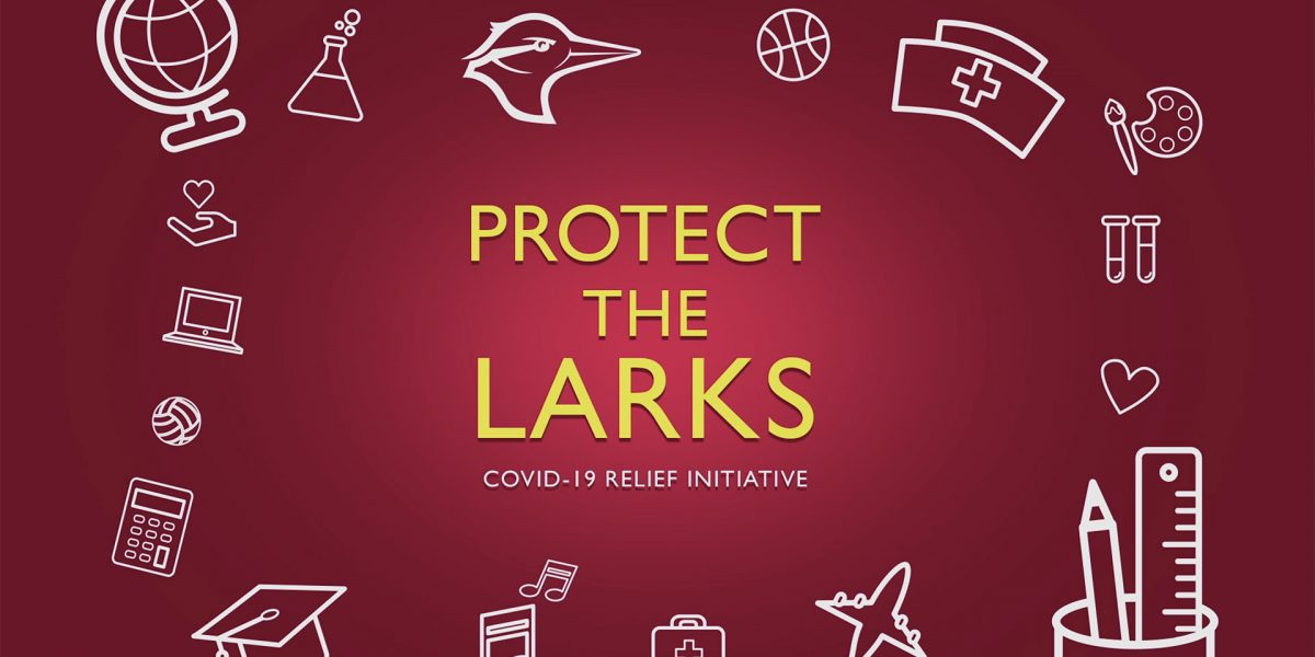 Protect the Larks